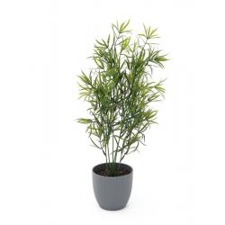 Umělá dekorativní rostlina - Asparagus v květináči, do interiéru / exteriéru, 50 cm