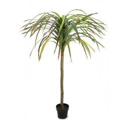 Umělá palma v květináči - rostlina Dracena, červeno - zelená, vysoká 170 cm