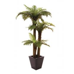 Kapradinová palma 2 kmeny 160 cm