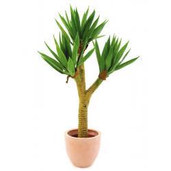 Juka palmový keř v květináči, 105 cm