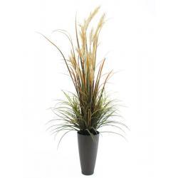 Říční tráva, 175 cm