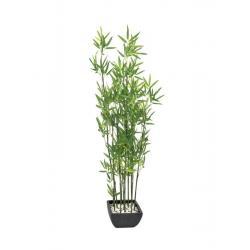 Bambus v černém květináči, 120 cm