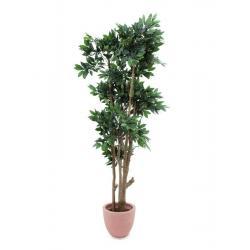 Lesní strom ze středozemí, 180cm